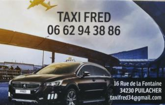 Taxi Fred, Taxi en France